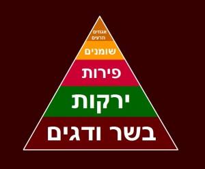 paleoPyramidLG